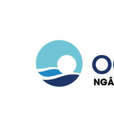 OCEANBANK lựa chọn Repu triển khai Email Marketing Mailchimp